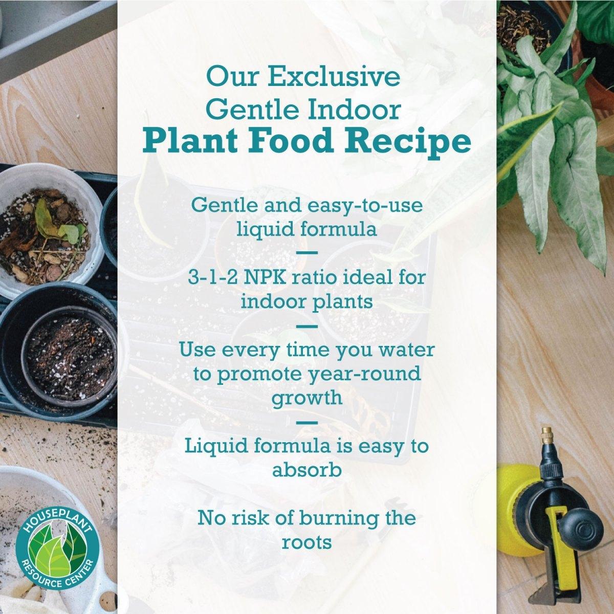 indoor-plant-food-3