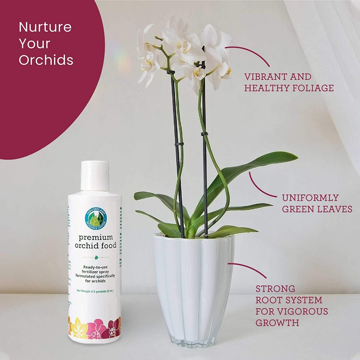 Orchid-Food-Image-2